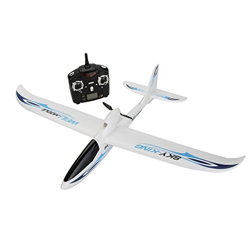 Wltoys F959 Sky-King RC Airplane (Best Quality Option)