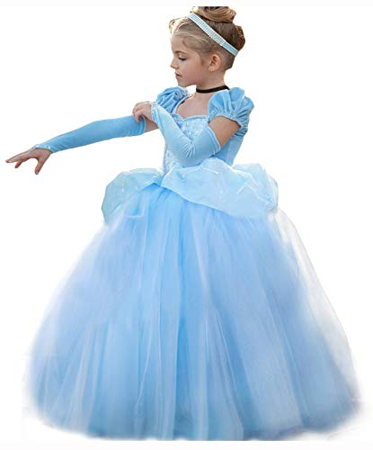 Cinderella Dress Princess Costume
