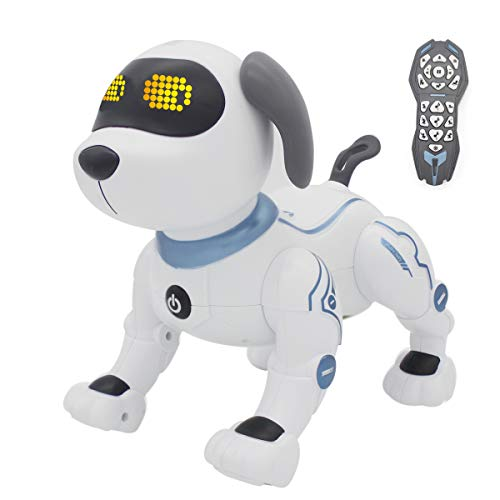 fisca Remote Control Dog (Best Quality Option)