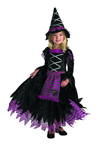 Disguise Fairytale Witch Costume