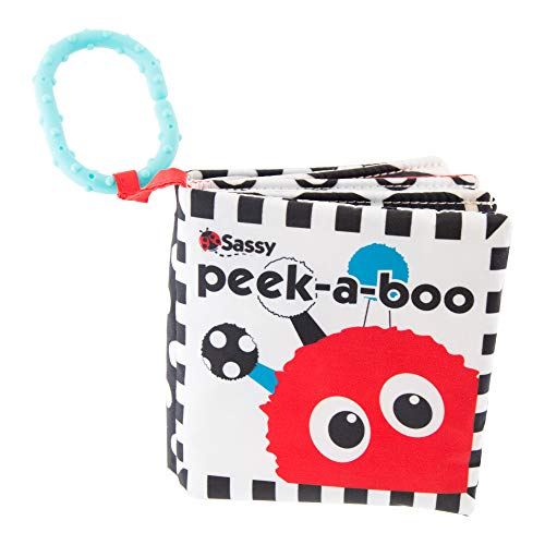 Sassy Peek-A-Boo Activity Book with Attachable Link (Best Budget Option)