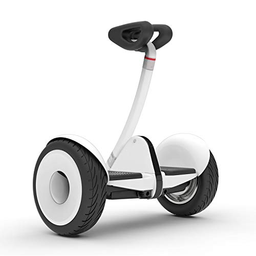 Segway Ninebot S (Best Quality Option)