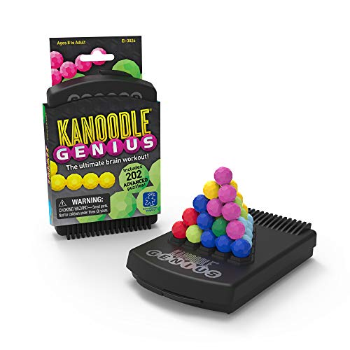 Educational Insights Kanoodle Genius Puzzle Game