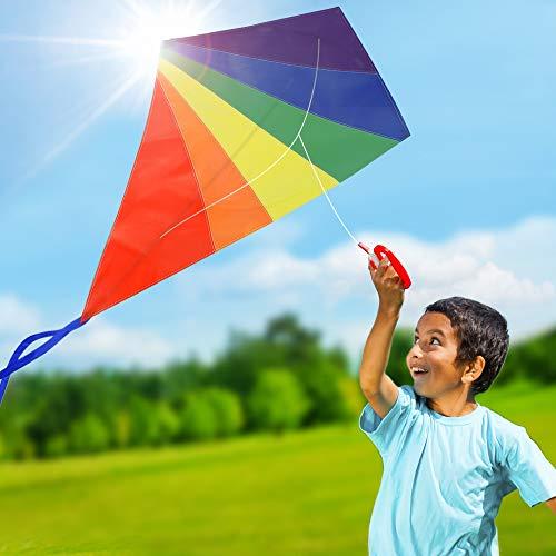 Easy to Fly Diamond Rainbow Kite