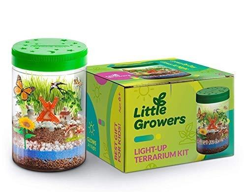 Momila Light-up Terrarium Kit (Best Eco-Friendly Educational Toy)