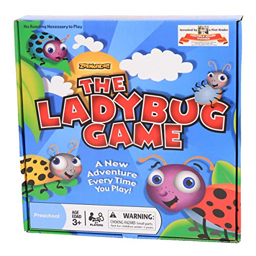 The Ladybug Game