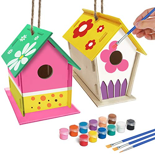 2 Pack DIY Bird House Kit
