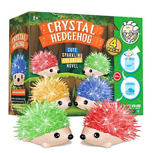 XXTOYS Crystal Growing Kit